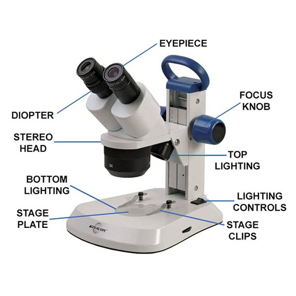 Labeled Parts of a Stereo Microscope
